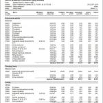 Tlačový výstup Súhrn predaných položiek podľa typov platieb (modul Pokladnica OBERON)